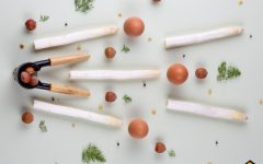 Asperge des Sables des Landes, recette mousseline, noisettes et aneth