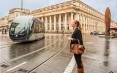 Asperge des Sables des Landes et Bordeaux, une ville, un produit élégant