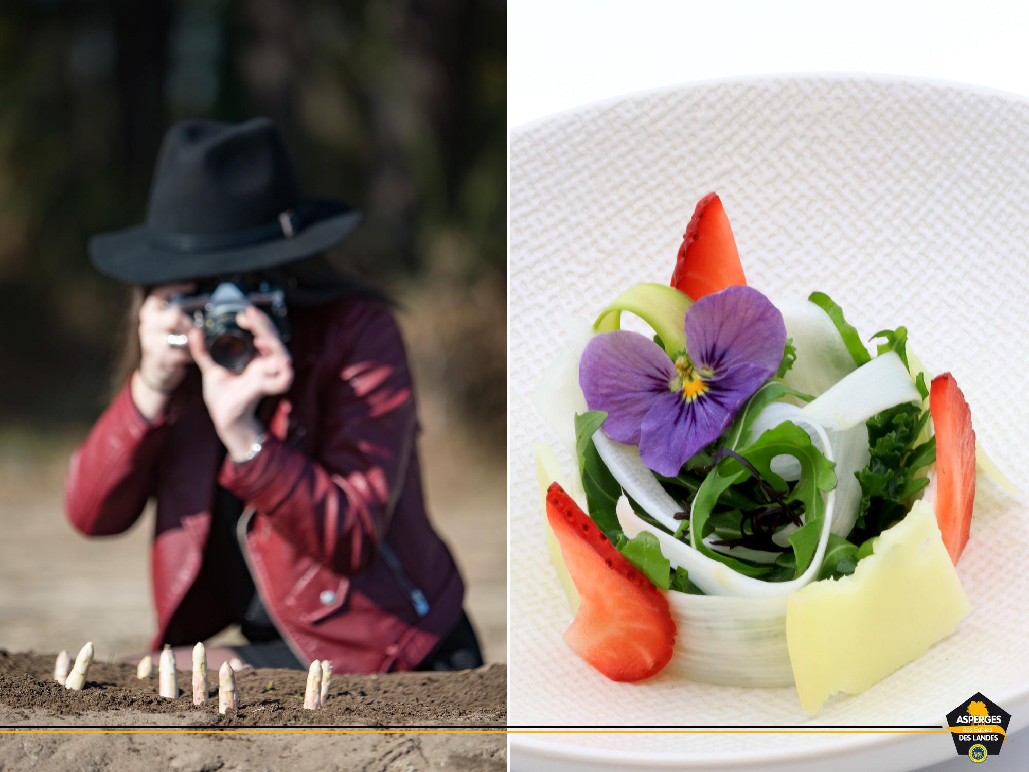 Recette de salade roquette et Asperge des Sables des Landes